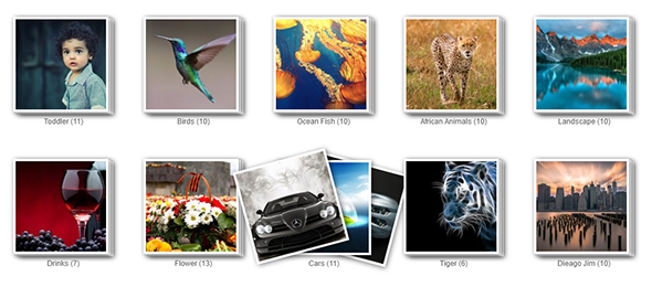 Album Gallery – WordPress Photo Gallery Plugin - 1