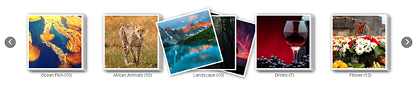 Album Gallery – WordPress Photo Gallery Plugin - 7
