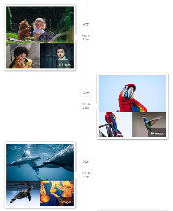 Album Gallery – WordPress Photo Gallery Plugin - 6
