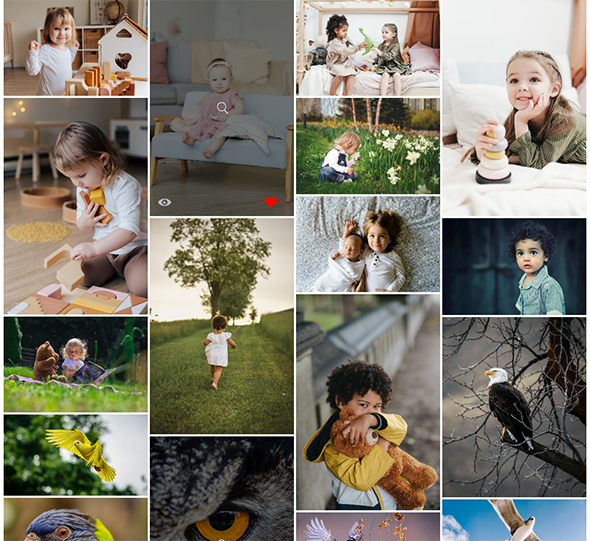 Album Gallery – WordPress Photo Gallery Plugin - 3