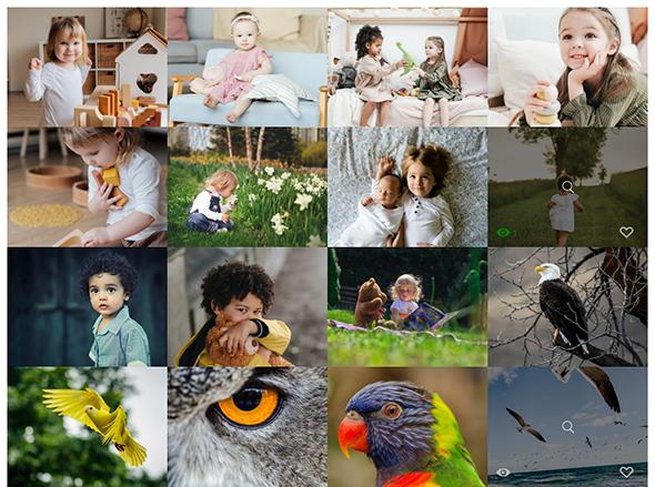 Album Gallery – WordPress Photo Gallery Plugin - 2