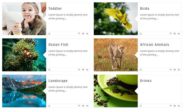 Album Gallery – WordPress Photo Gallery Plugin - 5
