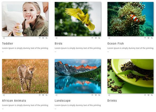 Album Gallery – WordPress Photo Gallery Plugin - 4